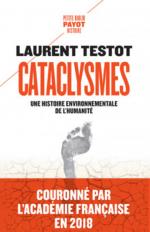 Cataclysmes. Une histoire environnementale de l'humanité